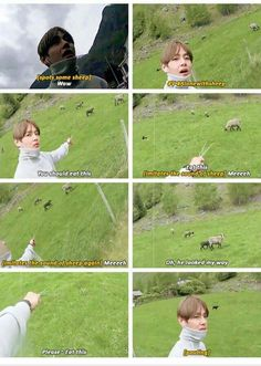 The sheep probably had a shock when it realized it was V from BTS>>> oh my goodness, you can totally tell that tae is like. Park Ji Min, Bts Boys, Bts Bangtan Boy, Jung Kook, Cypher Pt 4, Bts Memes Hilarious, V Taehyung, Kim Taehyung Funny, Dad Jokes