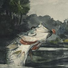 Audio Lecture: Winslow Homer, Artist and Angler