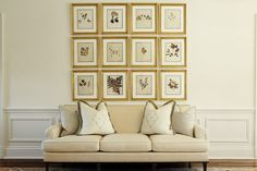 Things That Inspire: The design impact of a framed series - framed botanicals