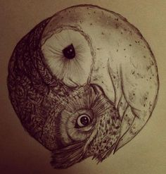 a yin yang represented in the form of two owls