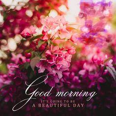 Good Morning Greetings Good Morning Coffee Gif, Good Morning Love, Good Morning Good Night, Morning Greetings Quotes, Good Morning Messages, Good Morning Wishes, Good Morning Inspirational Quotes, Good Morning Quotes, Morning Pictures