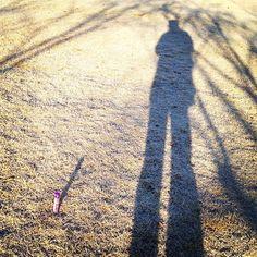 068- @dadatada 「霜が降りた!」 おはようございます!岡山市晴れ。朝日に庭の霜が輝いてキラキラ綺麗です #30jc #juicnow #kabaya @ カバヤ食品株式会社本社