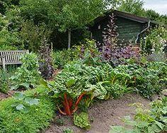 Garden diy ideas vegetables companion planting Ideas for 2019 Amazing Gardens, Beautiful Gardens, Garden Fire Pit, Lawn Edging, The Secret Garden, Garden Images, Planting Vegetables, Vegetable Gardening, Garden Signs