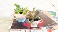 Porque amamos garimpo de objetos  #suculentas #suculovers #ceramica #xicara #garimpo #decoração #presentecriativo #oitominhocas | contato: oitominhocas@gmail.com