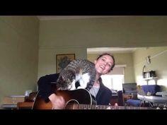 ▶ 'Loverless' feat. George the cat - Ayleen O'Hanlon - YouTube