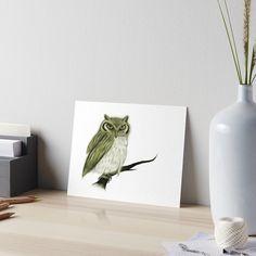 Anne Geddes, Top Artists, Trippy, Watercolor Paper, Art Boards, Monochrome, Print Design, Presentation, Owl