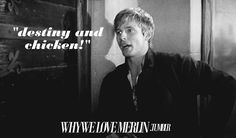 it is destiny my love....destiny and chicken! Merlin