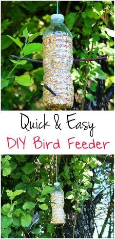 DIY Bird Feeder   Kid craft   Kids Activity   Bird Study Unit