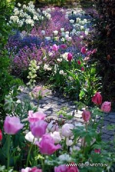 Je adore my petite garden all in pink and lilac.......