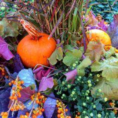 Happy #FirstDayofFall! #Minnesota #MN #fall #autumn #leaves #Pumpkins #falltime #season #seasons #instafall #instagood #instaautumn #photooftheday #leaf #foliage #colorful #orange #red #autumnweather #fallweather #nature