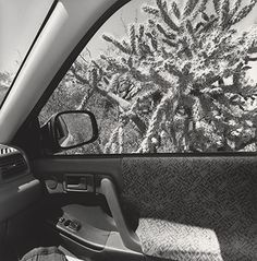 "Lee Friedlander's ""America by Car"" Collection"
