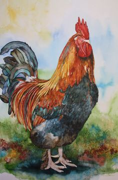 Mister Rooster.  Betty Kloosterman