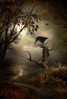 Samhain | Partager :