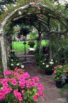 Beautiful arbor entry