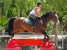 Star Tracks: Thursday, May 15, 2014 | JUMP SHOT | No horsing around for Kaley Cuoco, who shows off her equestrian skills while horseback riding Wednesday at a stable in L.A.