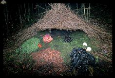 "A BOWER Built by a Vogelkop Gardener Bowerbird. A male Vogelkop is somewhat of a craftsman when comes to making these cone-shaped hut structures. They also decorate the ""front lawn"" with flowers, leaves, and beetles to compete with their neighbors. If a female visits and likes the treasures gathered, they will mate."