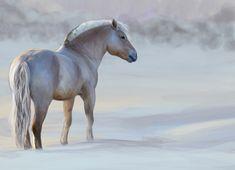 Norwegian Fjord Horse by Jammiska on DeviantArt
