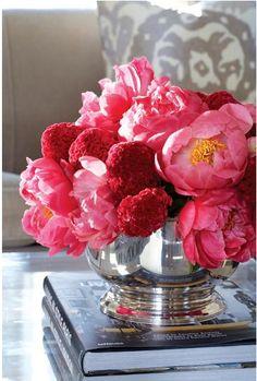 In Good Taste: Sam Allen - Design Chic - beautiful flower arrangement of peonies for the living room coffee table! Beautiful Flower Arrangements, My Flower, Fresh Flowers, Floral Arrangements, Beautiful Flowers, Peony Arrangement, Small Flowers, Beautiful Life, Spring Flowers