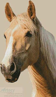 Palomino Horse - cross stitch pattern designed by Tereena Clarke. Category: Horses.