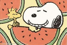Cheesy Grin Snoopy taking a bite out of a watermelon
