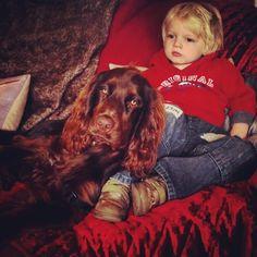 Mandy Charlton -  Photographer,Writer,Blogger: Fairy Godmothers, Book bargains and emergency cudd...