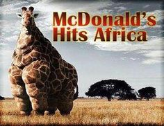 McDonald's arriva in africa