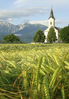 Beautiful Slovenia [Photo by Simona Mubi]