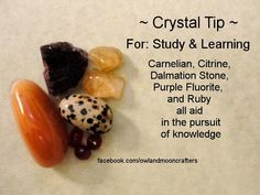 Crystal Tip - Study & Learning