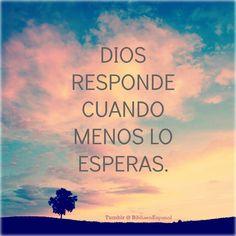 """Salmos 145:19 (RVC) """"Tú respondes a las peticiones de quienes te honran; escuchas su clamor, y los salvas."""" #Biblia #Dios #Jesús Tumblr @ BibliaenEspanol"""