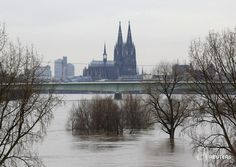 Cologne Cathedral will turn out its lights in protest of an anti-Muslim march: http://reut.rs/1vQgojV