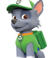 Read on for some fun facts about the PAW Patrol Live characters! Paw Patrol Badge, Paw Patrol Party, Paw Patrol Birthday, Paw Patrol Rocky, Rocky Pat Patrouille, Personajes Paw Patrol, Flareon Pokemon, Imprimibles Paw Patrol, Paw Patrol Stickers