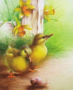 David A Finney — Ducklings (450x550)
