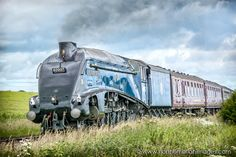 'Sir Nigel Gresley' Alnmouth. I've removed the overhead lines as they were a big distraction http://www.northumbrianimages.com
