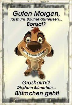 gute nacht Freunde , bis morgen - http://guten-abend-bilder.de/gute-nacht-freunde-bis-morgen-112/