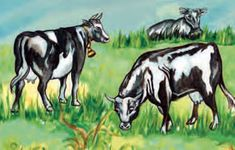 Η κτηνοτροφική παραγωγή και η αλιεία στην Ελλάδα Moose Art, Animals, Animales, Animaux, Animal, Animais