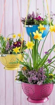 Фото: Украшение сада с помощью простых кухонных предметов (Фото)