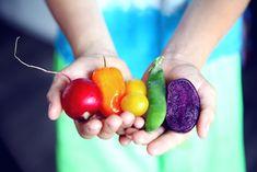 Um Lebensmittelverschwendung vorzubeugen helfen zwei Dinge ganz besonders: Einen Menüplan für mehrere Tage im voraus erstellen, um den genauen Mengenbedarf zu ermitteln. Und 𝐝𝐚𝐬 𝐫𝐢𝐜𝐡𝐭𝐢𝐠𝐞 𝐋𝐚𝐠𝐞𝐫𝐧 𝐯𝐨𝐧 𝐋𝐞𝐛𝐞𝐧𝐬𝐦𝐢𝐭𝐭𝐞𝐥𝐧 𝐰𝐢𝐞 𝐎𝐛𝐬𝐭 𝐮𝐧𝐝 𝐆𝐞𝐦ü𝐬𝐞. In unserem ewe Magazin Beitrag findest du Tipps für die richtige aufbewahrung und Lagerung von verschiedenen Gemüsesorten. Toddler Wont Eat, Plant Based Eating, Natural Health Remedies, Companion Planting, Best Diets, Olives, Ketogenic Diet, Ibs Diet, Diet Foods