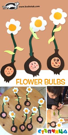 Flower+Bulbs