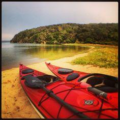 By initika Caption: Kayak camping under the stars. Tomales Bay