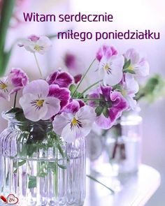 Wednesday Greetings, Happy Sunday, Good Morning, Glass Vase, Table Decorations, Flowers, Tuesday, Collage, Humor