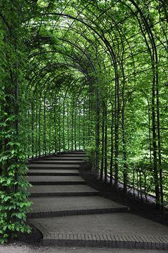Alnwick Castle Gardens - Alnwick Northumberland | Flickr - Photo Sharing!