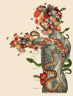 Collage artist Travis Bedel created these stunning collages that merge anatomical imagery with illustrations from science guides, textbooks,. Arte Com Grey's Anatomy, Anatomy Art, Human Anatomy, Art Du Collage, Mixed Media Collage, Art And Illustration, Vintage Illustrations, Travis Bedel, Colossal Art