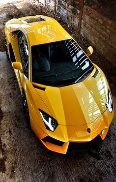 Lamborghini  sports cars #coupon code nicesup123 gets 25% off at  Provestra.com Skinception.com