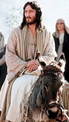 Image result for savior riding on a donkey
