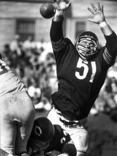 Dick Butkus in 1965: The Baddest Rookie the NFL Has Ever Seen Nfl Bears, Bears Football, Football And Basketball, Chicago Bears, Football Players, Hockey, Baseball, Football Photos, Sports Photos