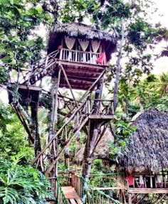 Dominican Tree House Village – A Week of Adventure