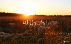news Hot Threads - 5 Fakta Seru Seputar Bulan Agustus yang Harus Agan Tahu! August Born Quotes, Welcome August Quotes, August Wallpaper, Photo Wallpaper, Hello August Images, August Pictures, Seasons Months, August Month, August 2013