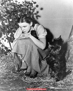 Publicity still of Judy Garland as Dorothy with Toto on The Wizard of Oz set.