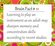 Brain Facts  - DaisyBrains.com.