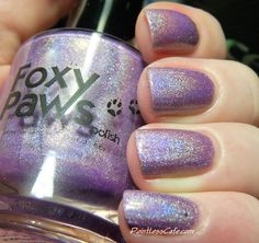 Foxy Paws Holo Dolly Collection: Elegance, A D@mned Exasperating Woman and It Takes a Woman
